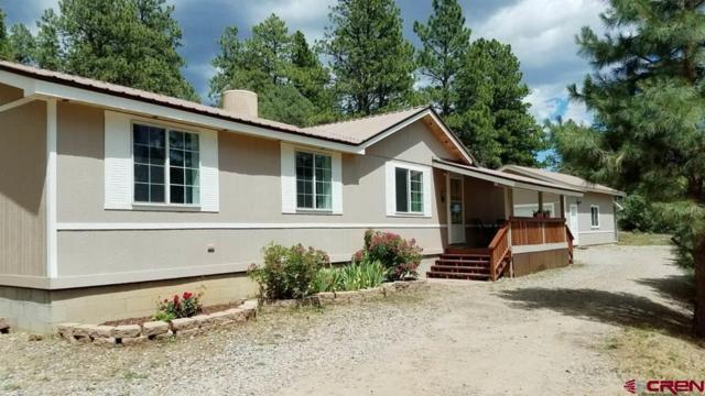 1050 Deer Trail, Durango, CO 81303 (MLS #760489) :: Durango Mountain Realty