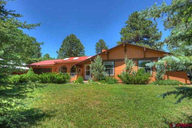 117 Aspen Drive, Durango, CO 81301 (MLS #760571) :: Durango Mountain Realty