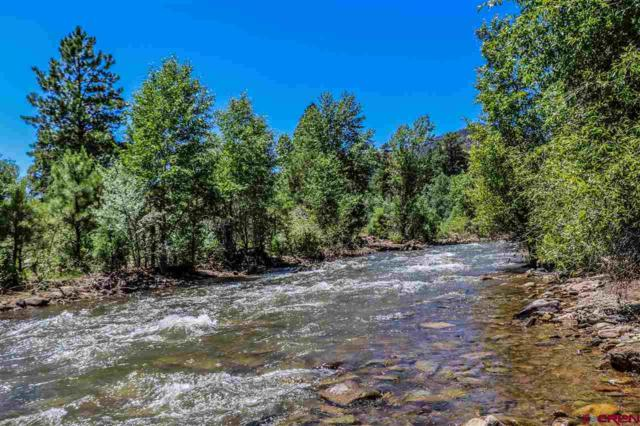 108 Fat Dog Lane, Durango, CO 81301 (MLS #760575) :: Durango Mountain Realty