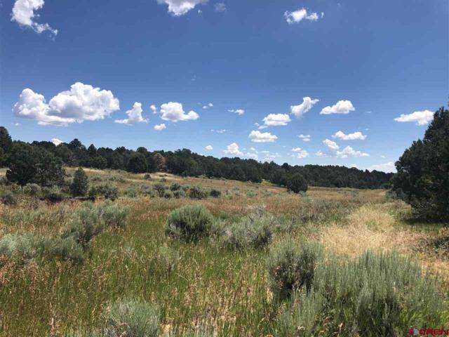5175 Cr 116 Road, Hesperus, CO 81326 (MLS #760633) :: Durango Mountain Realty
