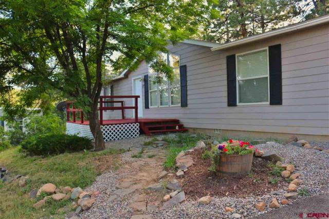 17 Holly Hock Trail, Durango, CO 81303 (MLS #760635) :: Durango Mountain Realty