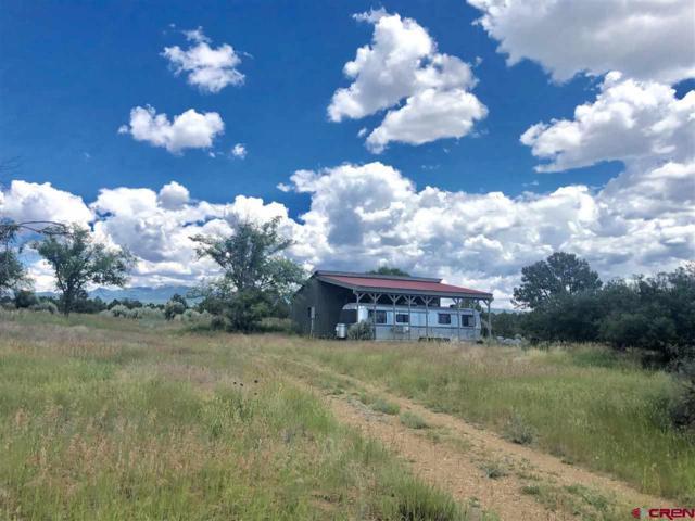 5175 Cr 116 Road, Hesperus, CO 81326 (MLS #760682) :: Durango Mountain Realty