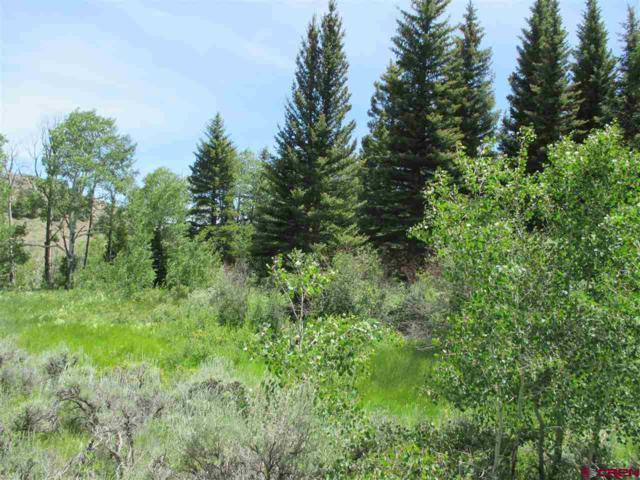 4791 County Road 25, Powderhorn, CO 81243 (MLS #760836) :: The Dawn Howe Group | Keller Williams Colorado West Realty