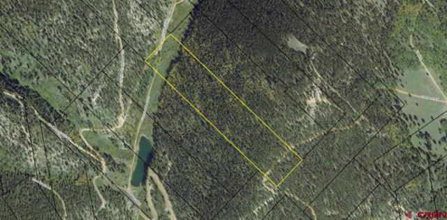 Porpenn Road, Pitkin, CO 81241 (MLS #760852) :: The Dawn Howe Group | Keller Williams Colorado West Realty