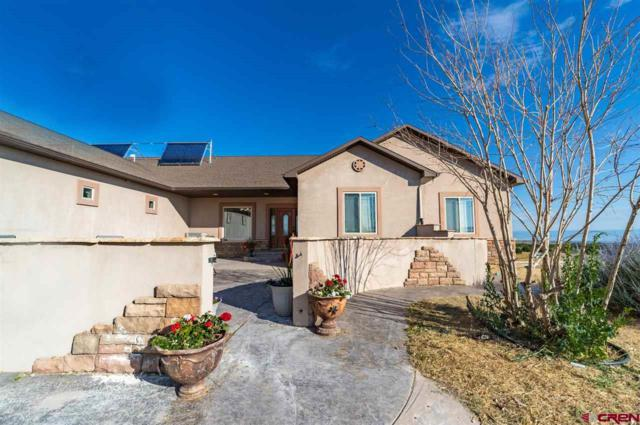 19101 Dave Wood Road, Montrose, CO 81403 (MLS #760883) :: The Dawn Howe Group   Keller Williams Colorado West Realty