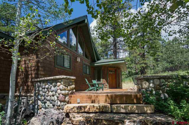 257 Starwood Trail, Durango, CO 81301 (MLS #760890) :: The Dawn Howe Group | Keller Williams Colorado West Realty