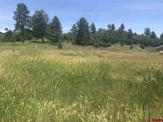 84 Overlook, Pagosa Springs, CO 81147 (MLS #760911) :: The Dawn Howe Group   Keller Williams Colorado West Realty