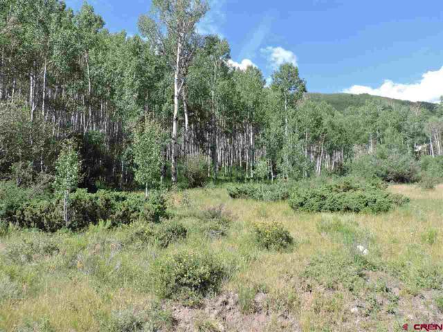 Elk Meadow Run, Antonito, CO 81120 (MLS #760975) :: The Dawn Howe Group | Keller Williams Colorado West Realty