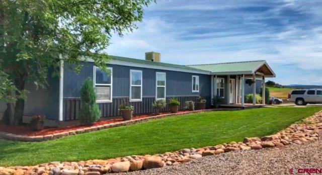 115 Tres Aguas Road, Durango, CO 81137 (MLS #761134) :: Durango Mountain Realty