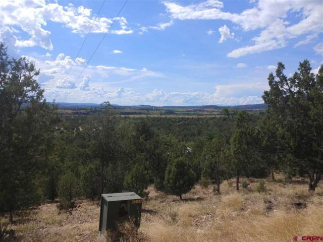 TBD Pinon Hills Circle, Arboles, CO 81121 (MLS #761222) :: The Dawn Howe Group   Keller Williams Colorado West Realty