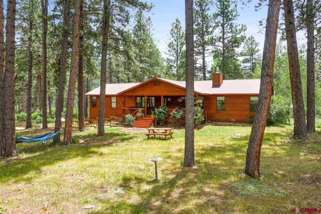 92 Vaca Place, Durango, CO 81301 (MLS #761284) :: Durango Mountain Realty