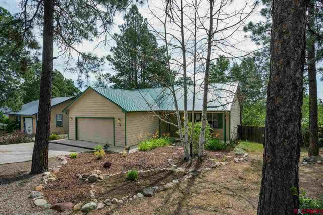 73 Wood Haven Way, Durango, CO 81301 (MLS #761301) :: Durango Mountain Realty