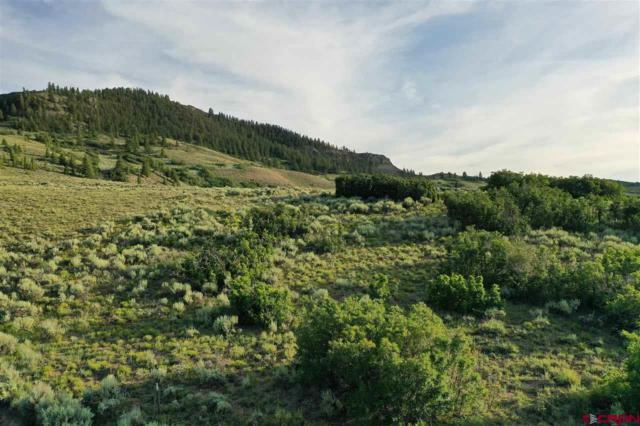 TBD Forest Service Road 3014, Gunnison, CO 81230 (MLS #761524) :: The Dawn Howe Group | Keller Williams Colorado West Realty