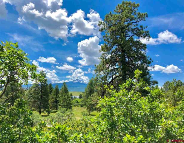 Lot 21 N. Gurley Reserve Drive, Norwood, CO 81423 (MLS #761530) :: The Dawn Howe Group | Keller Williams Colorado West Realty