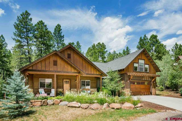 94 Cave Basin Court, Durango, CO 81301 (MLS #761537) :: Durango Mountain Realty