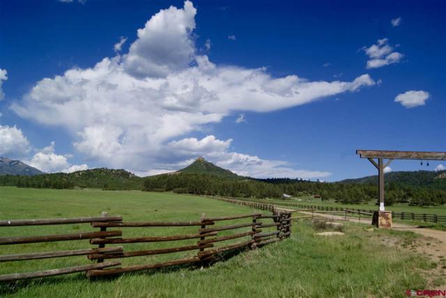 72 Sponsel Lane, Hesperus, CO 81326 (MLS #761548) :: Durango Mountain Realty