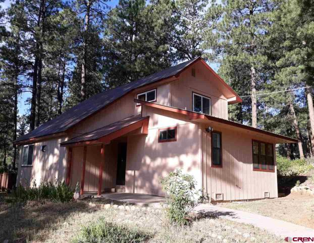 6355 County Road 240, Durango, CO 81301 (MLS #761725) :: Durango Mountain Realty