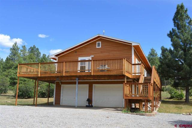 703 Cr 224, Durango, CO 81301 (MLS #761935) :: Durango Mountain Realty