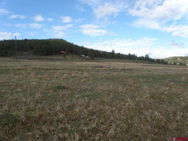 365 Mayflower, Pagosa Springs, CO 81147 (MLS #761947) :: The Dawn Howe Group | Keller Williams Colorado West Realty