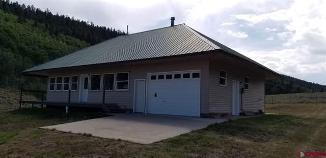 1501 Armitage Springs Road, Powderhorn, CO 81243 (MLS #762907) :: The Dawn Howe Group | Keller Williams Colorado West Realty