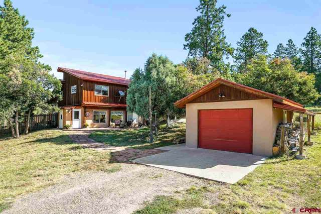 1300 Meadow Road, Durango, CO 81303 (MLS #762923) :: Durango Mountain Realty