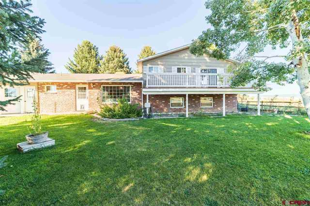 60835 Maple Grove Road, Montrose, CO 81403 (MLS #763010) :: The Dawn Howe Group | Keller Williams Colorado West Realty