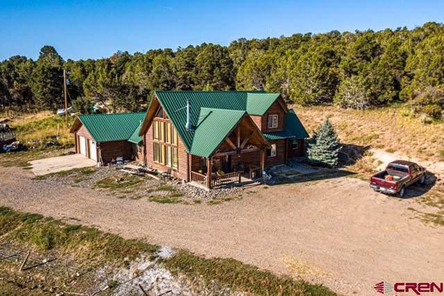 17586 2550 Road, Cedaredge, CO 81413 (MLS #763015) :: The Dawn Howe Group | Keller Williams Colorado West Realty