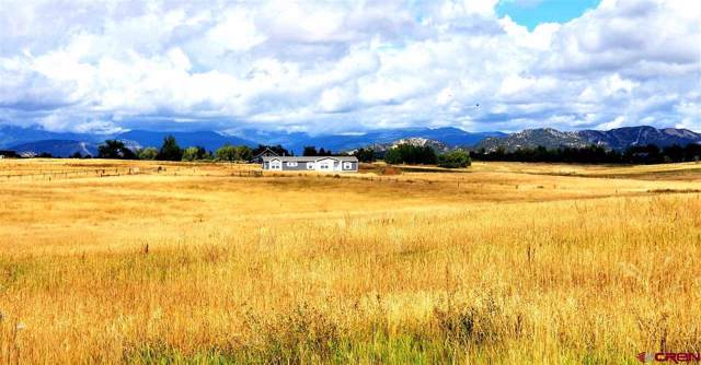 831 County Road 304, Durango, CO 81301 (MLS #763018) :: Durango Mountain Realty