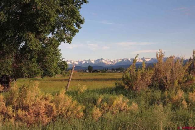 14810 6720 Road, Montrose, CO 81401 (MLS #763037) :: The Dawn Howe Group | Keller Williams Colorado West Realty