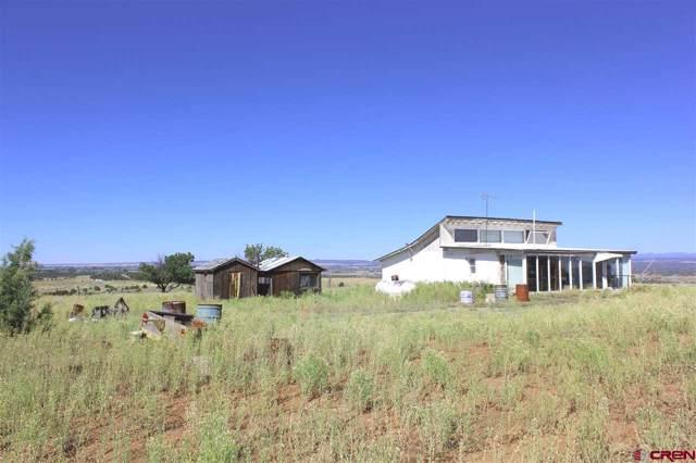 12025 Road 20, Cortez, CO 81321 (MLS #763041) :: The Dawn Howe Group | Keller Williams Colorado West Realty