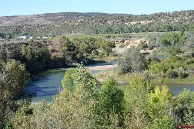 TBD S Hwy 550 Highway, Durango, CO 81303 (MLS #763091) :: Durango Mountain Realty