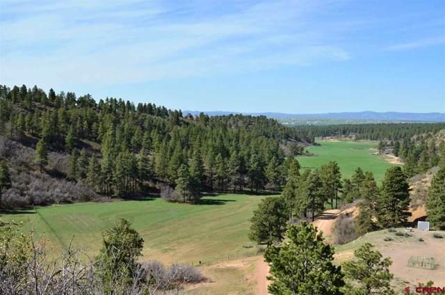 TBD Mira Sol Drive, Durango, CO 81301 (MLS #763259) :: Durango Mountain Realty