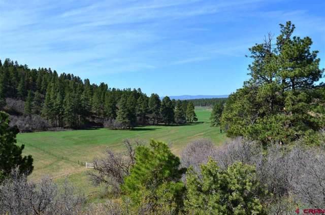 TBD Mira Sol Drive, Durango, CO 81301 (MLS #763268) :: Durango Mountain Realty