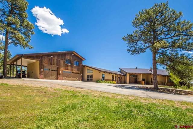 385 Mira Sol Drive, Durango, CO 81301 (MLS #763278) :: Durango Mountain Realty