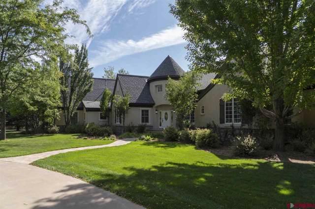 885 Red Rock Road, Durango, CO 81301 (MLS #763469) :: Durango Mountain Realty