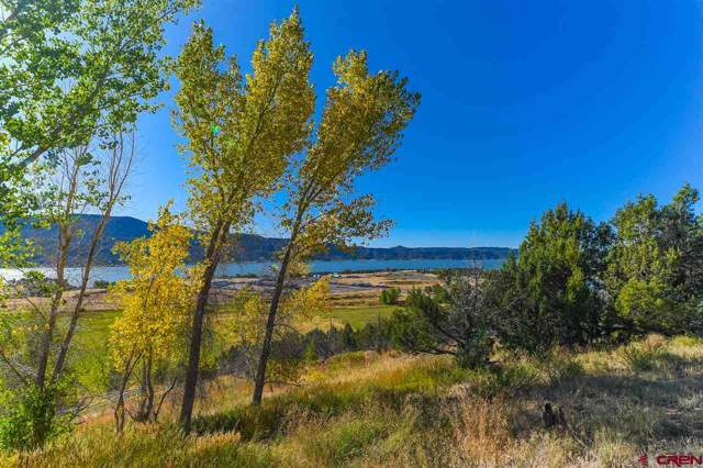 244 San Marcial Place, Pagosa Springs, CO 81147 (MLS #763631) :: The Dawn Howe Group   Keller Williams Colorado West Realty