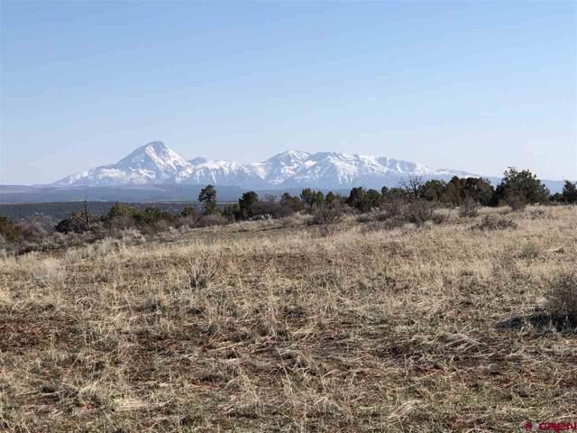 11220 Road Z Road, Pleasant View, CO 81331 (MLS #763924) :: The Dawn Howe Group | Keller Williams Colorado West Realty