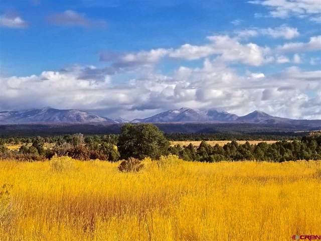 3794 Cr 117, Hesperus, CO 81326 (MLS #763987) :: The Dawn Howe Group   Keller Williams Colorado West Realty