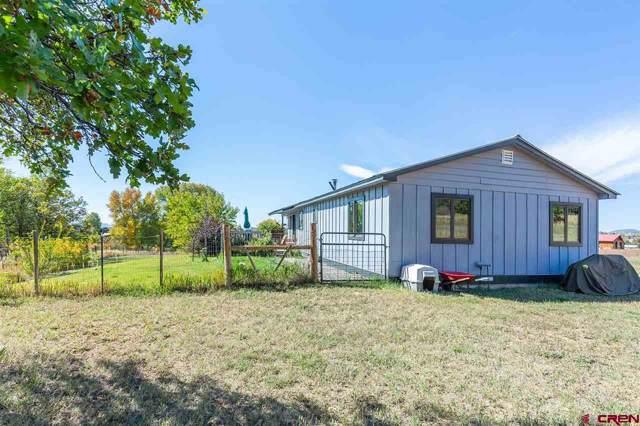 301 Pioneer Circle, Durango, CO 81303 (MLS #764035) :: The Dawn Howe Group | Keller Williams Colorado West Realty