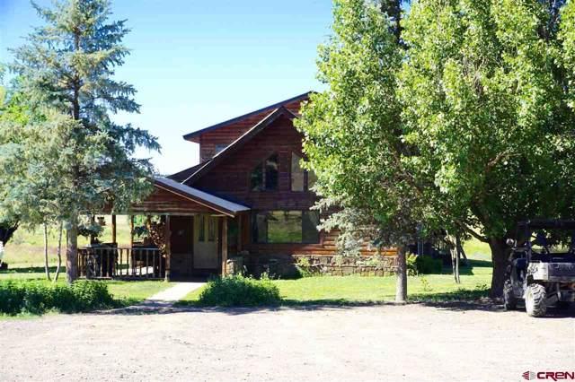 6405 Cr 700, Pagosa Springs, CO 81147 (MLS #764036) :: The Dawn Howe Group | Keller Williams Colorado West Realty
