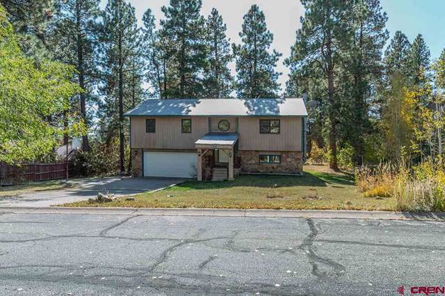 184 Cedar Drive, Durango, CO 81301 (MLS #764038) :: Durango Mountain Realty