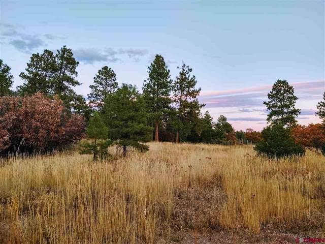 66 Mountain View Circle, Durango, CO 81303 (MLS #764072) :: Durango Mountain Realty
