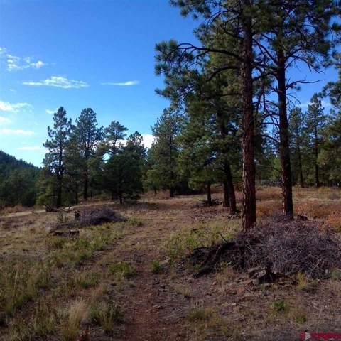 997 Hawks Meadow Drive, Bayfield, CO 81122 (MLS #764117) :: The Dawn Howe Group | Keller Williams Colorado West Realty