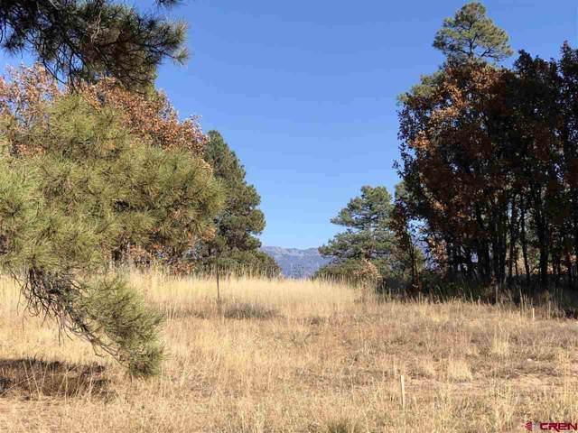 940 County Road 600, Pagosa Springs, CO 81147 (MLS #764144) :: The Dawn Howe Group | Keller Williams Colorado West Realty