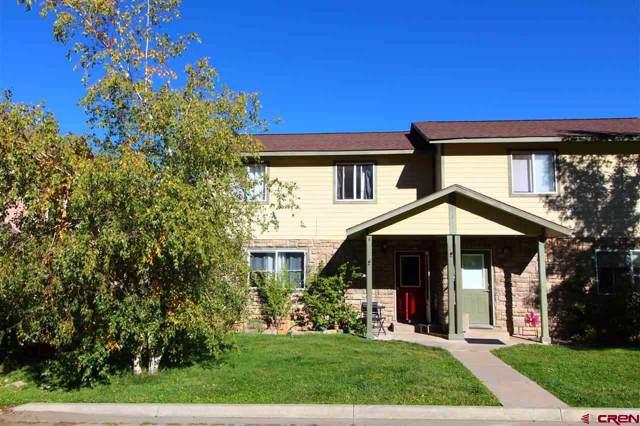 229 Jenkins Ranch Road A, Durango, CO 81301 (MLS #764253) :: Durango Mountain Realty