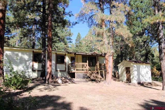 71 Holly Hock Trail, Durango, CO 81303 (MLS #764279) :: Durango Mountain Realty