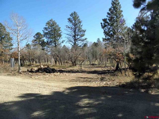 TBD Mckenzie Springs Ranch Road, Placerville, CO 81430 (MLS #764312) :: The Dawn Howe Group   Keller Williams Colorado West Realty