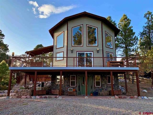 38 Lane Drive, Durango, CO 81303 (MLS #764313) :: Durango Mountain Realty