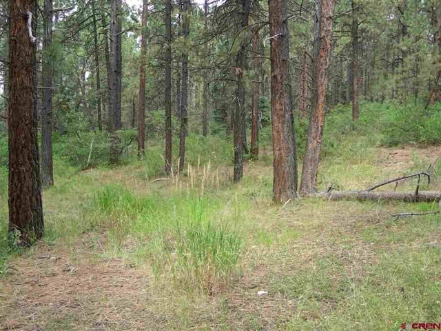562 Sierra Circle, Durango, CO 81301 (MLS #764350) :: Durango Mountain Realty