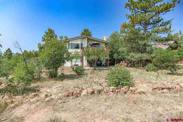 214 E Golf Place, Pagosa Springs, CO 81147 (MLS #764369) :: The Dawn Howe Group | Keller Williams Colorado West Realty